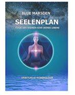 Buch Seelenplan